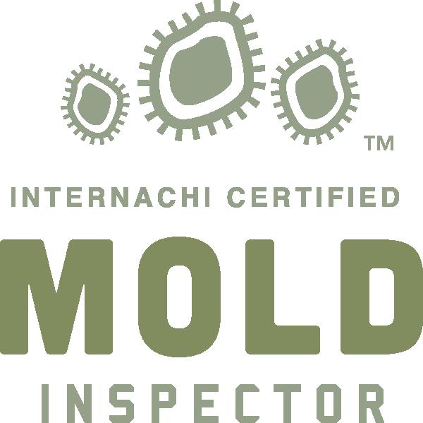 Ogden mold inspection near me