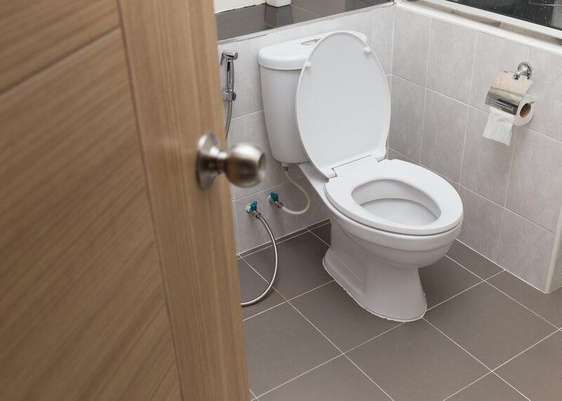 Toilet Inspection Salt Lake City